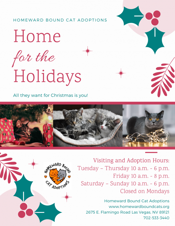 Maddie's Pet  Project Holiday Social Media Promotions