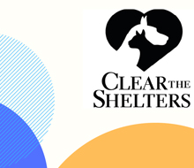 Clear the Shelters posters